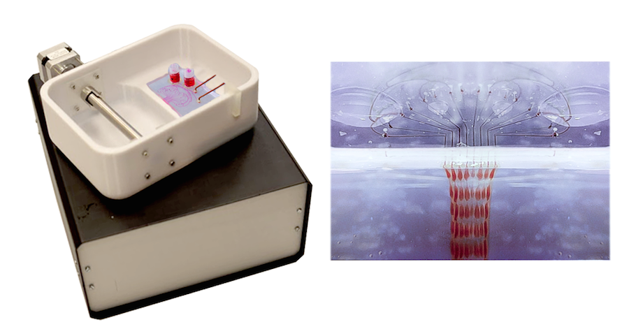 PrintAlive BioPrinter