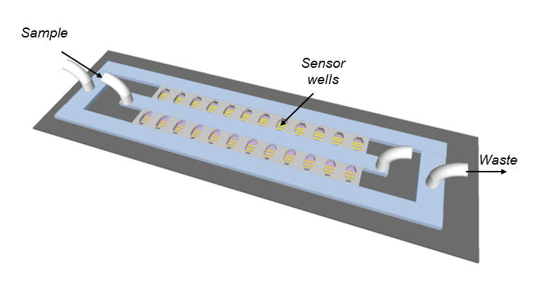 Schematic of the antibiotic susceptibility testing device. The bacteria are cultured in miniature chambers, each of which contains a filter for bacterial capture and electrodes for readout of bacterial metabolism (Image: University of Toronto).