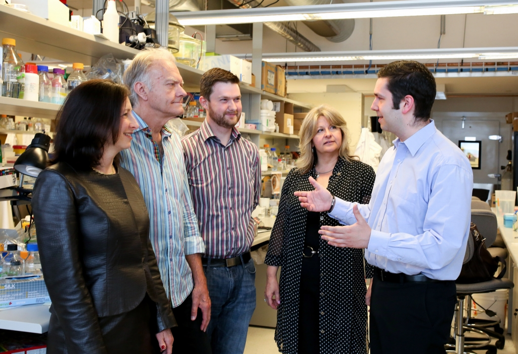 University of Toronto researchers (pictured) show that engineered 'hydrogels' not only help with stem cell transplantation, but actually speed healing in both the eye and brain