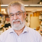 Professor Michael Sefton awarded the Terumo Global Science Prize