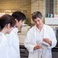 New funding from Genome Canada will help Professor Elizabeth Edwards (ChemE) and her team commercialize a microbial culture that can digest chemical pollutants without the need for oxygen. (Photo: Sarah Collaton)
