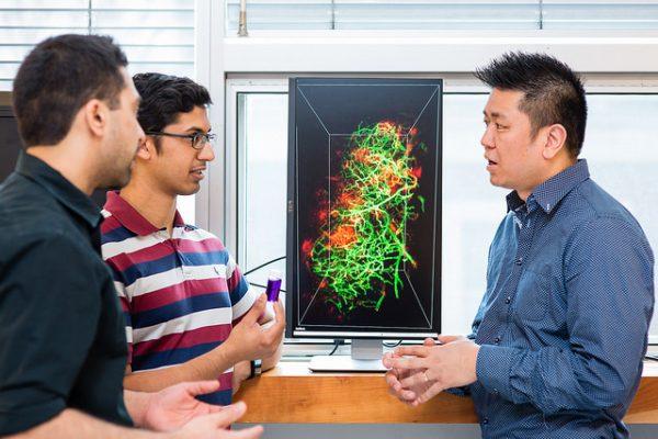 Professor Warren Chan (right) has been named a Distinguished Professor of Nanobioengineering. (Credit: Neil Ta)