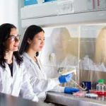Professor Milica Radici (IBBME, ChemE, left) develops lab-grown human tissues that could be used to test new drugs or repair damaged organs. (Photo: Neil Ta)