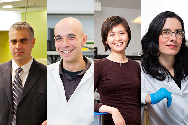 From left: U of T Engineering professors Constantin Christopoulos (CivE), Rodrigo Fernandez-Gonzalez (IBBME), Joyce Poon (ECE) and Milica Radisic (IBBME, ChemE) are among the 2017 new and renewed Canada Research Chair recipients. Launched in 2000, the CRC program aims to help the country attract and retain research leaders in engineering and natural sciences, health sciences, humanities and social sciences. (Credits, from left: Mark Balson, Neil Ta, Jason KB, Neil Ta).
