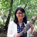 Building the 'bark biorefinery': Meet Professor Ning Yan