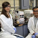 Chemical engineering PhD candidate Kayla Nemr and Professor Krishna Mahadevan grow yeast in a bioreactor. Along with their collaborators, they are using these organisms to transform bark, leaves and stems into the chemical building blocks of materials such as nylon. (Photo: Tyler Irving)