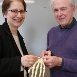 Professors Rita Kandel and Robert Pilliar (IBBME), at right, are working on a promising new treatment that could see diseased joints replaced with new tissue-engineered joints developed at U of T Engineering. (Credit: Jennifer Robinson)