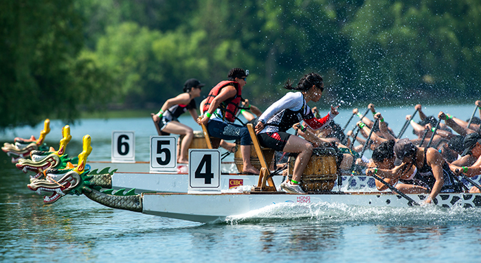 Two U of T Engineering Iron Dragons crews, boats #4 and #6, race in the University Division finals at a regatta on Toronto Island on June 21, 2018. Boat #4 placed first, and boat #6 placed third. This summer the national champions are flying to Szeged, Hungary to compete at the dragon boating world championships. (Credit: Laura Pedersen)