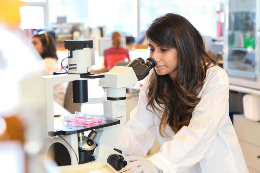 "Nika Shakiba (IBBME PhD 1T7) is the lead author on a new paper indicating that cells known as ""elite"" are more competitive than others in the process that transforms them into stem cells (Photo: Roberta Baker)"