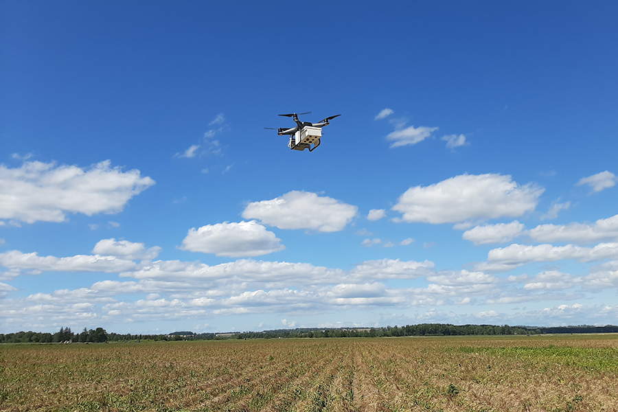 ID Green's prototype camera mounted on a drone over a field of potatoes near Otterville, Ontario. The team aims to use this technology to provide new insights for farmers and crop advisors. (Photo: Ehsan Vaziri)