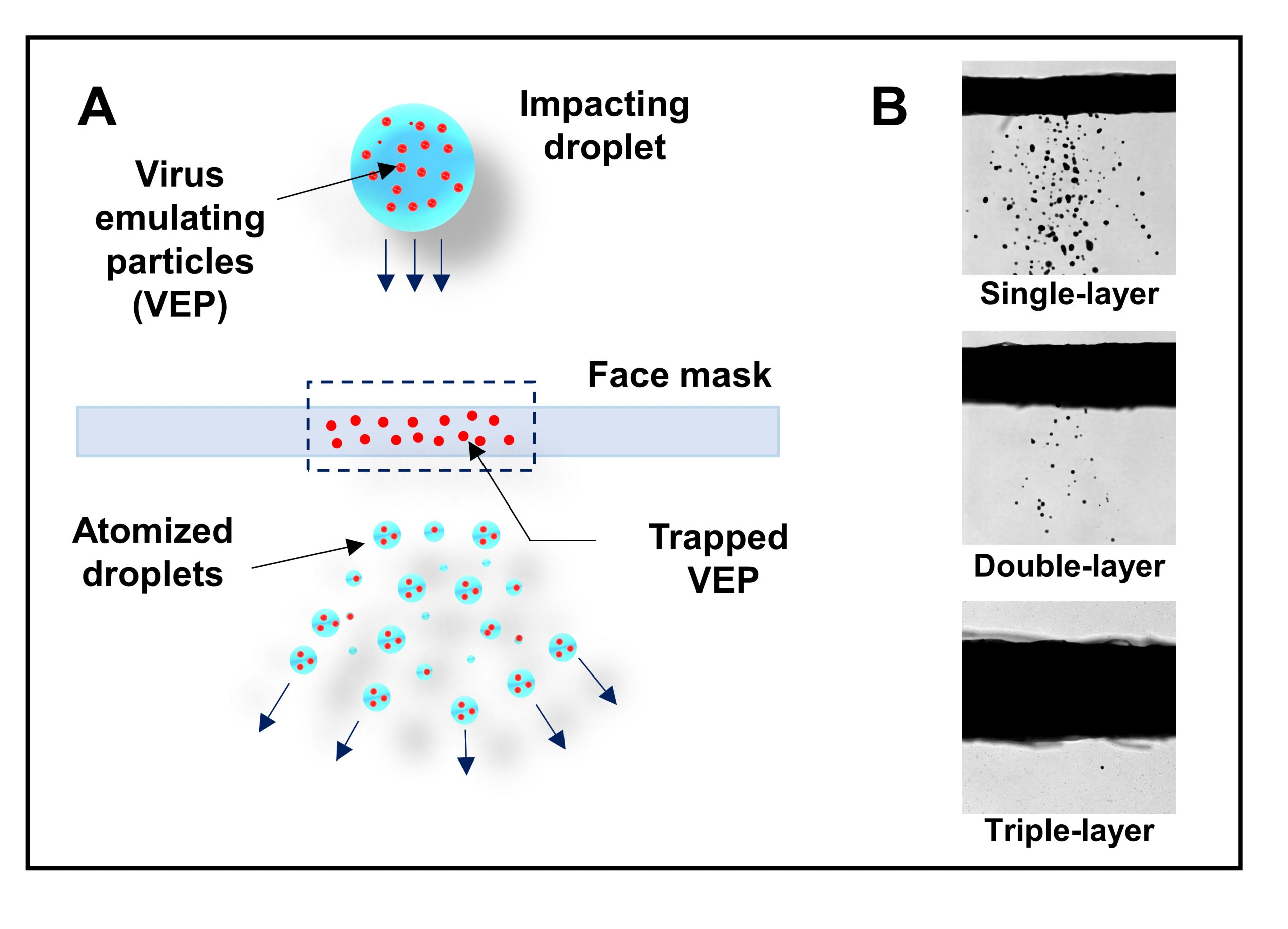 The diagram in A shows how larger, high-velocity liquid droplets can break up into smaller ones when they collide with mask material. The photographs in B demonstrate how double- and triple-layer masks prevent transmission of these secondary droplets. (Image: Shubham Sharma and Roven Pinto)