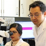 Professor Paul Yoo (right) and PhD candidate Zainab Moazzam are part of a team working on a novel therapy for overactive bladder disorder, an affliction faced by 18 per cent of Canadian adults. (Credit: Luke Ng)