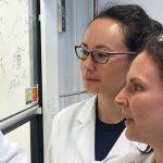 Understanding a key roadblock behind nanoparticle cancer drug delivery