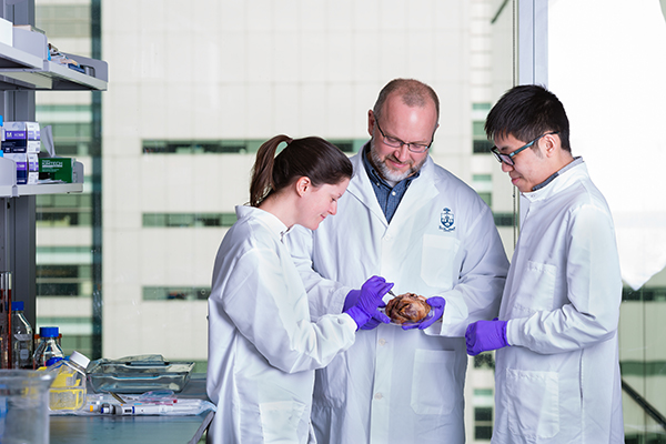 """Professor Craig Simmons (MIE, IBBME, at centre) encourages his students to test their hypotheses in the lab and make original research contributions. """"Training students is the way the University has our biggest and most immediate impact,"""