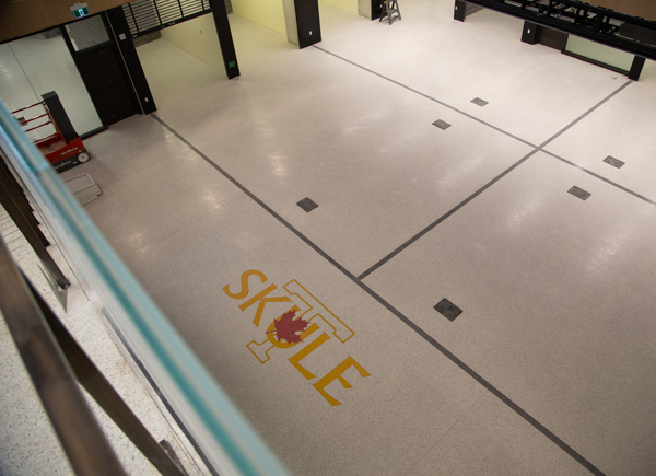 A view of the Engineering Society Arena, taken from the building's first floor. (Photo: Laura Pedersen)